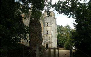 Castle-of-Herm-Rouffignac-Saint-Cernin-Dordogne